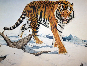 Siberian Tiger 1984 Limited Edition Print - Glen Loates