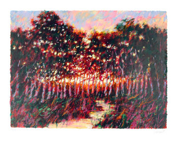 Forest  at Dusk 1980 Limited Edition Print - Aldo Luongo