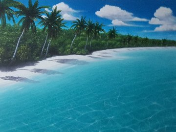Virgin Beach 1999 54x43 Original Painting - Dan Mackin