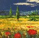 Tuscan Countryside With Poppies 2000 32x36 1