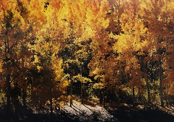 Fire of Autumn Panorama - Thomas Mangelsen