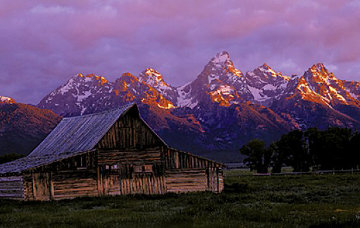 Teton Memories: The Moulton Barn Panorama - Thomas Mangelsen