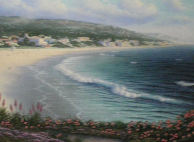 Laguna Beach Flowers and Hills, California 1989 30x40