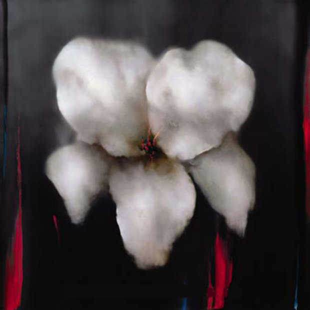 White Lily 2006 Embellished 43x43