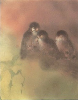 Owl Light 1985 Limited Edition Print - Kaiko Moti