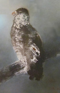 Falcon on Branch Limited Edition Print - Kaiko Moti