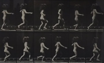 Animal Locomotion, Plate 469 1887 Photography - Eadweard Muybridge