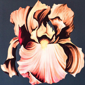 Iris 1978 Limited Edition Print - Lowell Blair Nesbitt