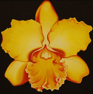 Yellow Orchid 1970 22x22 Original Painting - Lowell Blair Nesbitt