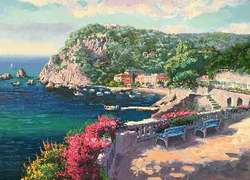 Costa Brava AP 1998 Limited Edition Print - Sam Park