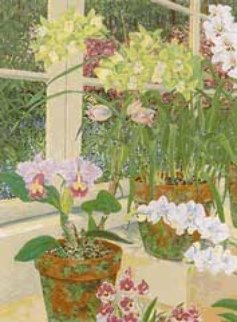 Orchids and Sunlight 1991 Limited Edition Print - John Powell