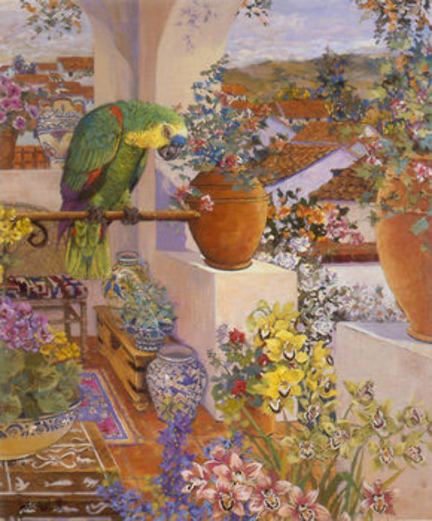 Parrot and Rooftops 1985