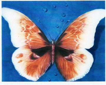 Butterfly 1988 Limited Edition Print by G.H Rothe