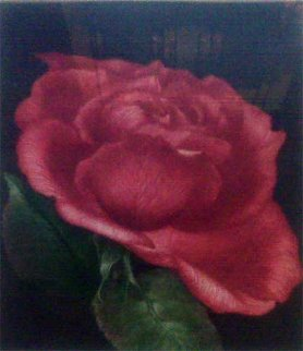 Spanish Rose 1978 Limited Edition Print - G.H Rothe