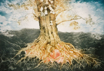 Oak Tree 1994 Limited Edition Print - G.H Rothe
