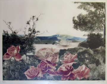 Rosecape Limited Edition Print - G.H Rothe