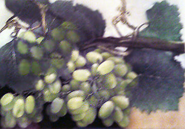 Grapes with Pastel 1998 Limited Edition Print - G.H Rothe