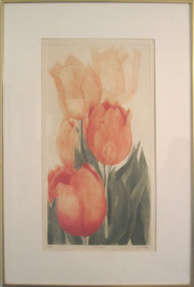 Tulips Limited Edition Print - G.H Rothe