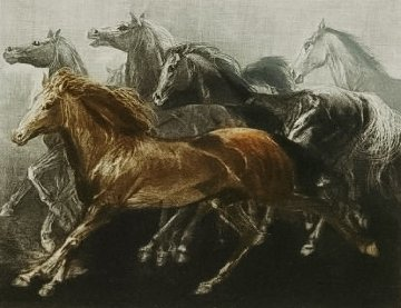 Endurance 1970 Limited Edition Print - G.H Rothe
