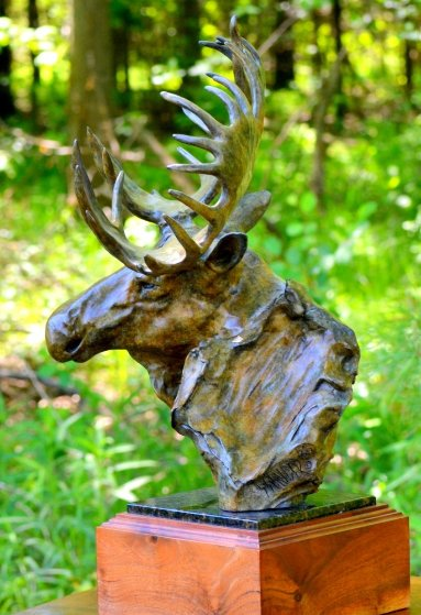 Moose Study Bronze Sculpture 1988