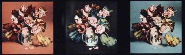 Roses and Poppies in Spotted Vase II    3 pc suite