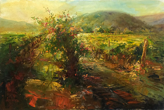 Streaming Light, Yountville Napa 24x36
