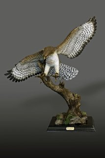 Red-Tailed Hawk Bronze Sculpture 2016 40x36 Sculpture - Barry Stein