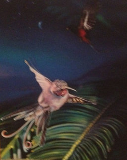 Hummingbird PP 1997 Limited Edition Print - Brett Livingstone Strong
