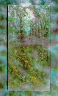 Emerald Rain Forest PP 1990 Limited Edition Print - Brett Livingstone Strong