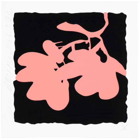 Eight Lantern Flowers, Suite of 8 Silkscreen Prints 2012