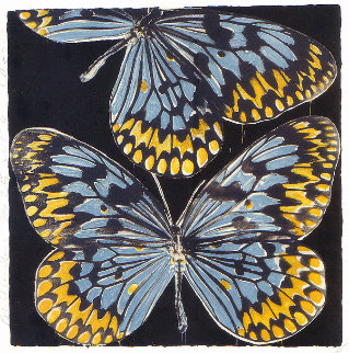 Butterflies - Monarch 2006 Limited Edition Print - Donald Sultan