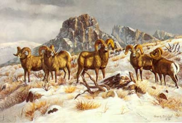 M Swanson Artist Wind River Winter by G...