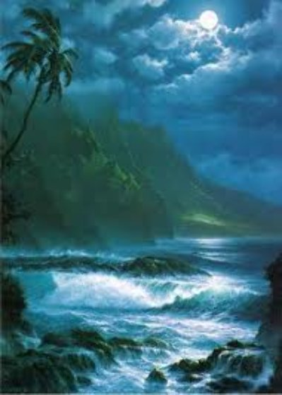 Moonlight Rhapsody  Hawaii 1993