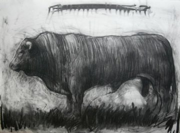 Bull Charcoal 2013 30x40 Drawing - Nico Vrielink