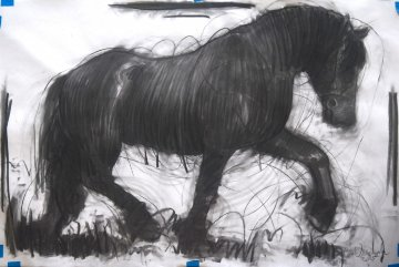 Horse 2 Drawing 2015 39x59 Drawing - Nico Vrielink