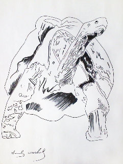 Galapagos Tortoise Drawing 1986 27x20 Drawing - Andy Warhol