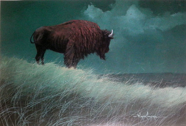 Buffalo on Hill