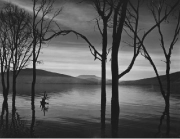 Lake Patzcuaro, Mexico Unique 1973 30x33 Photography - Brett Weston