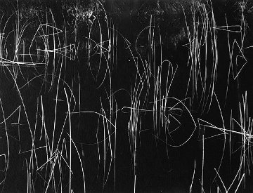 Reeds, Oregon 1975 Photography - Brett Weston