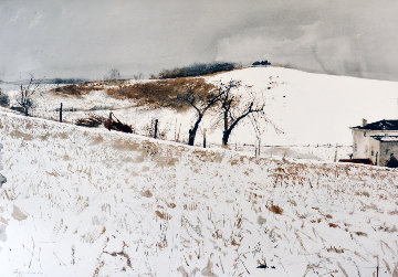 Fence Line 1976 Limited Edition Print - Andrew Wyeth