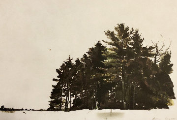 St. George's Pines 1967 HS Limited Edition Print - Andrew Wyeth