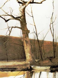 Cold Spring 1977 HS Limited Edition Print - Andrew Wyeth
