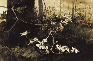 Dogwood 1983 HS Limited Edition Print - Andrew Wyeth
