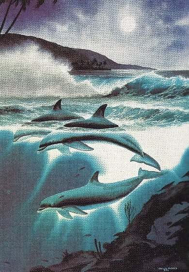 Above And Below AP 1992 Remarque: Moonlit Dolphins
