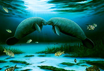 Manatee Encounter 2003 Limited Edition Print - Robert Wyland