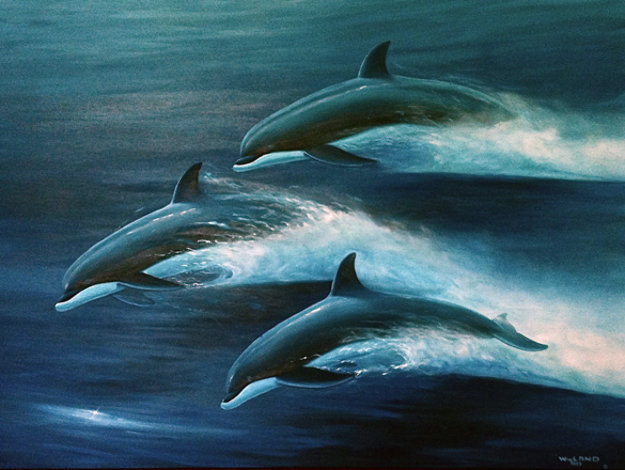 Pacific Travelers (Dolphins) 1995 48x60