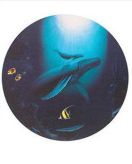 Innocent Age / Dolphin Serenity Limited Edition Print - Robert Wyland