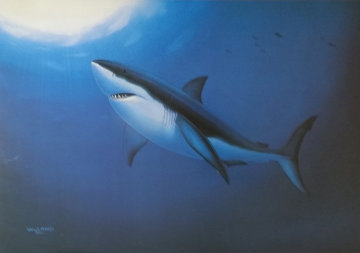 Great White 1992 Limited Edition Print - Robert Wyland