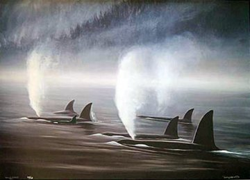 Orca Mist 1990 Limited Edition Print - Robert Wyland