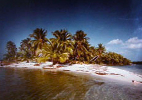 Paradise in the Keys 1984 by Clyde Butcher